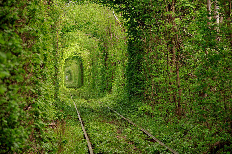 Tunnel of Love, Ukraine - Bild: Oleg Gordienko