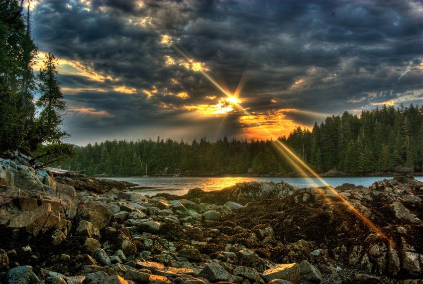 Vancouver Island, British Columbia, Kanada (Bild:  David J LaPorte)
