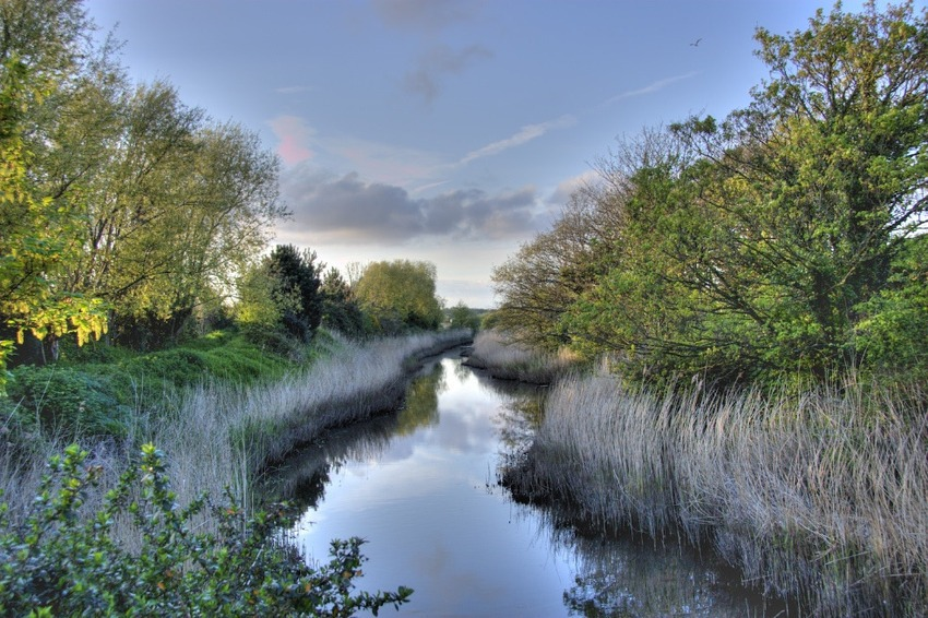 Alverstoke Creek, Hampshire, UK (Bild: Peter Pearson)