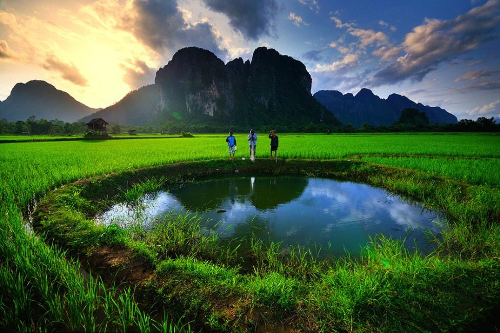 baby-rice-field_04