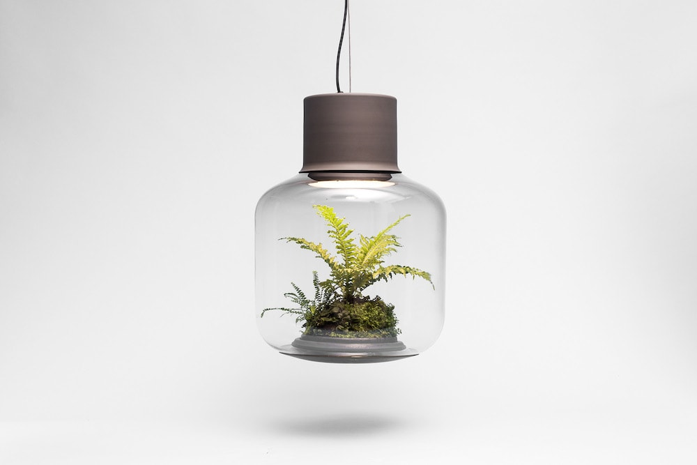 terrarium lamp von nui studio coffeebreak design blog. Black Bedroom Furniture Sets. Home Design Ideas