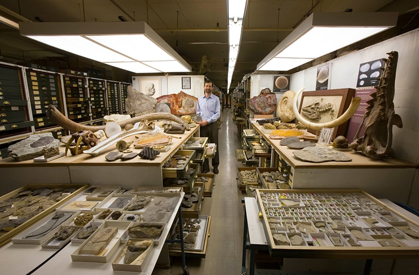 Geheimes Museum - Smithsonian Archive