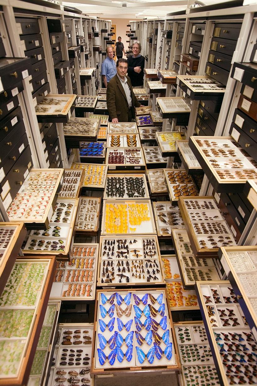 Geheimes Museum - Versteckte Archive