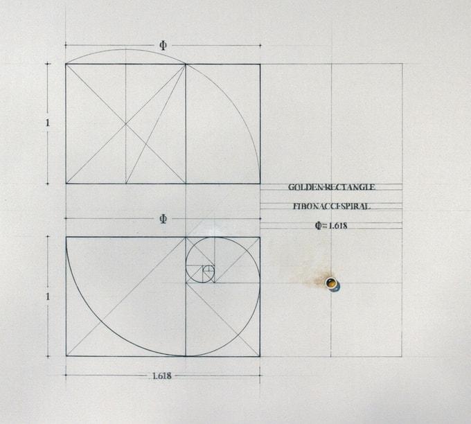 Rafael Araujo Goldener Schnitt Malbuch