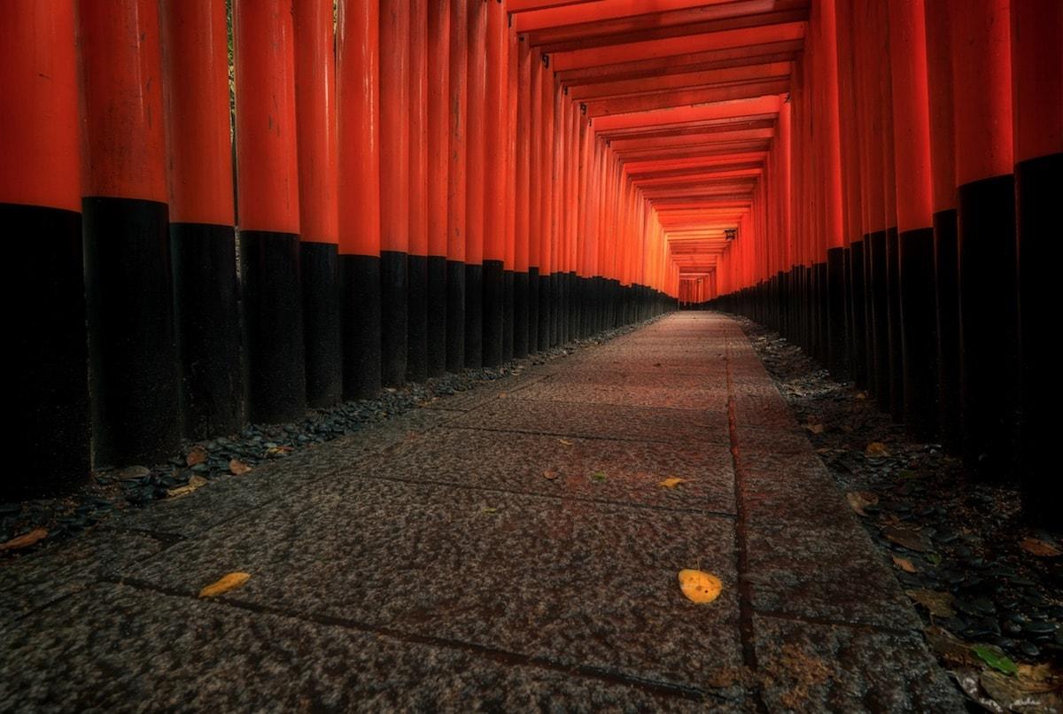 Leslie Taylor Fotograf Kyoto