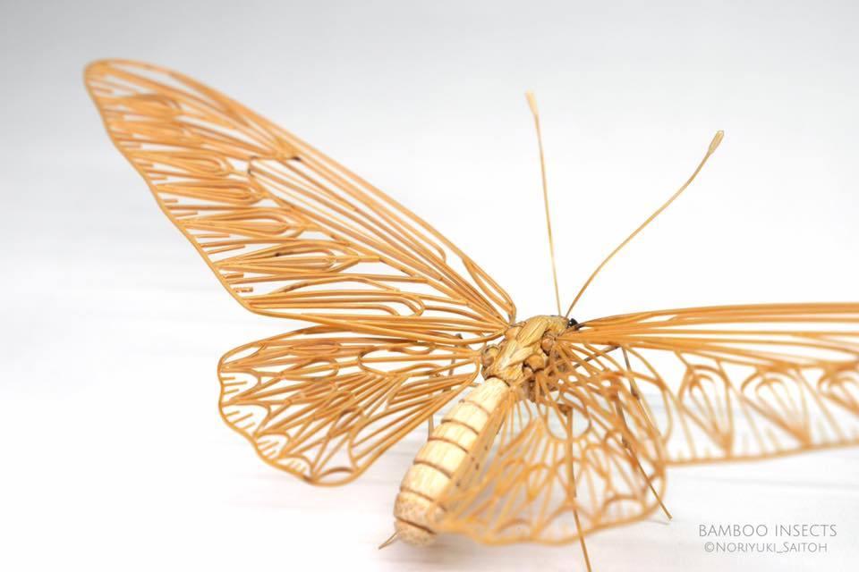 Noriyuki Saitoh Bamboo Insects