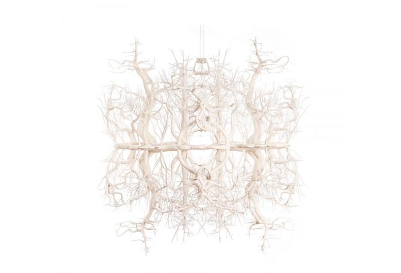 Forms In Nature Kronleuchter von Hilden & Diaz