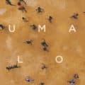 Ai Weiwei Human Flow