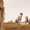Isle of Dogs Kino Film Design