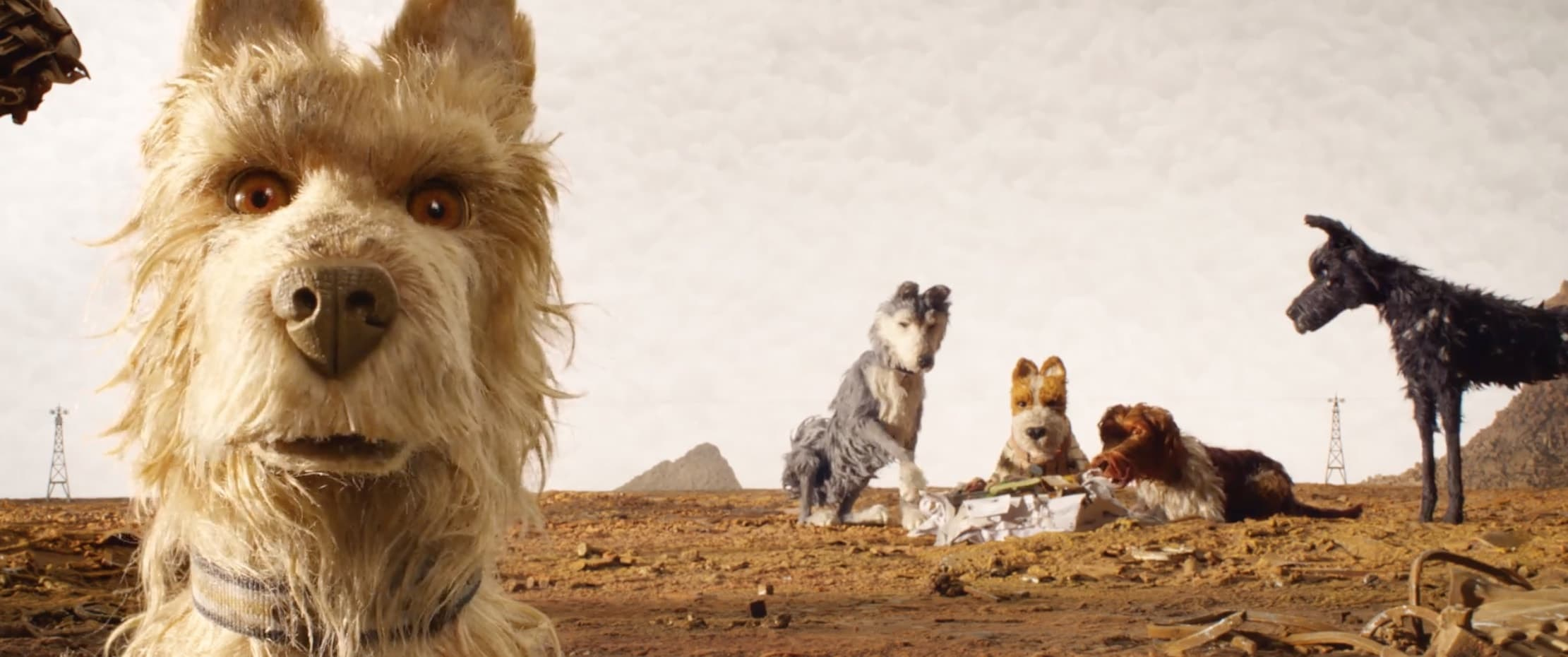 Isle of Dogs Kino Film Design