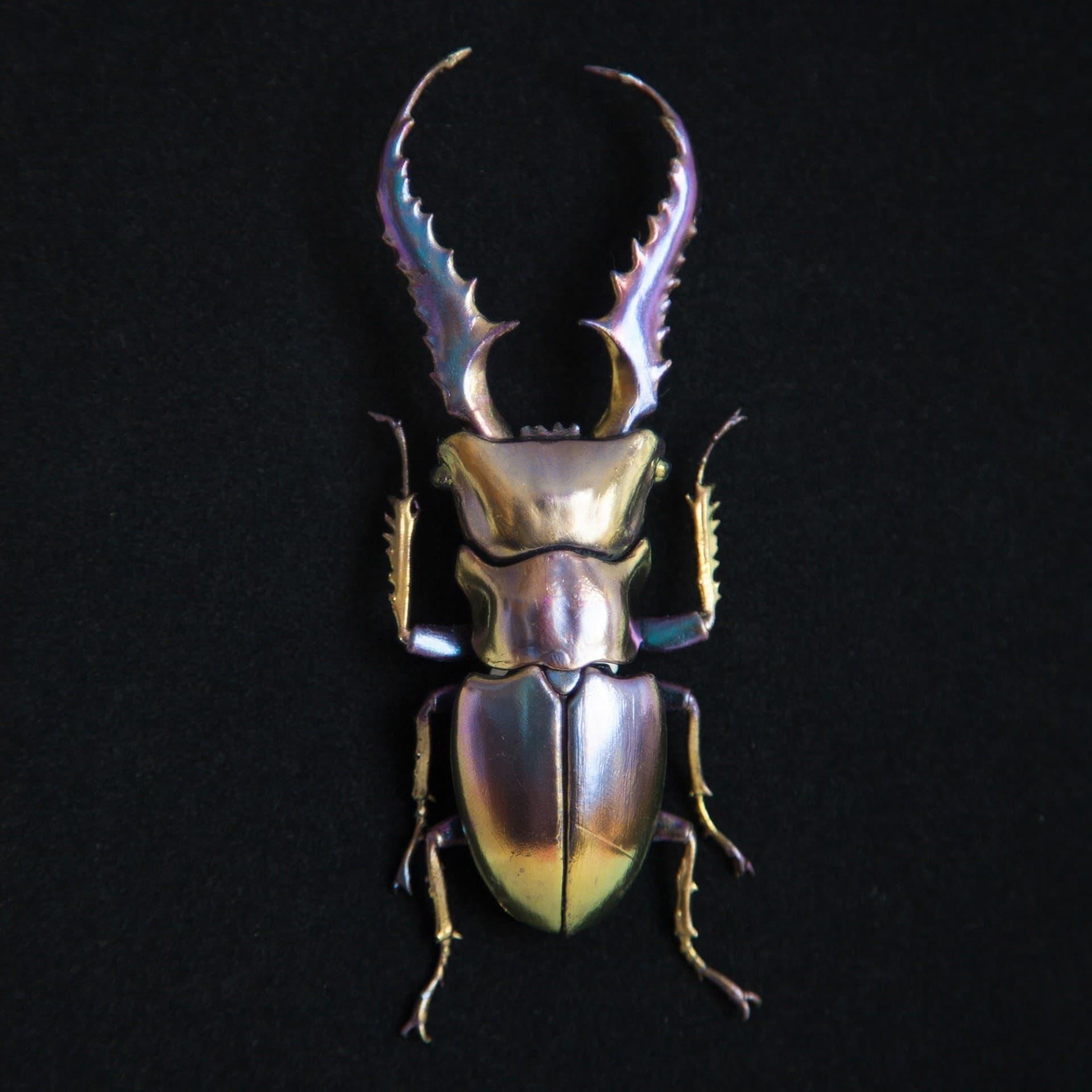 Mineral Bugs Design von Nozomi