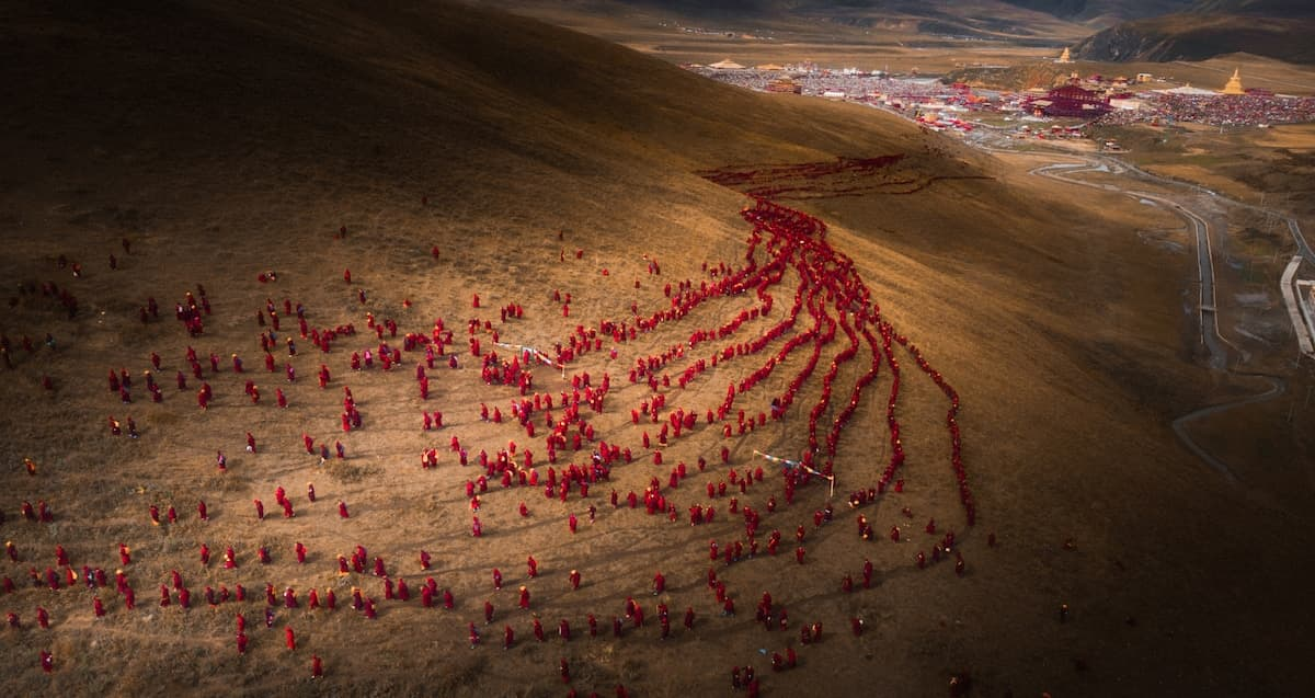 Sony World Photography Award Shortlist