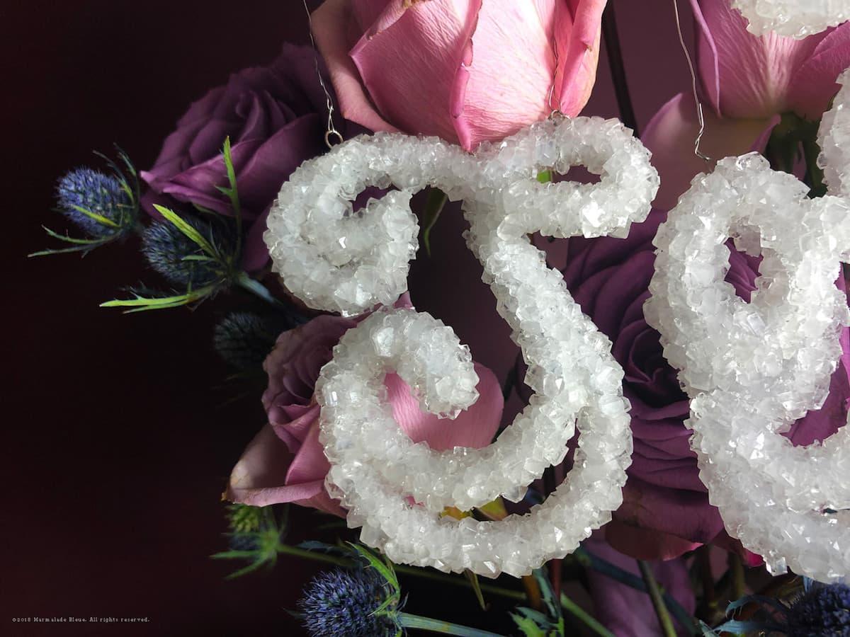 Danielle Evans - Typografie aus Pflanzen und Salz
