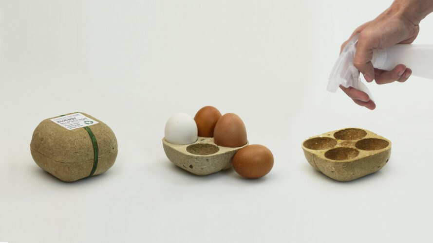 Biopack Eierkarton
