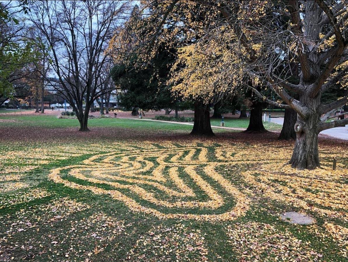 Joanna Hedrick - Fallen Ginkgo Art