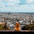 Bee Influencer - Fondation de France