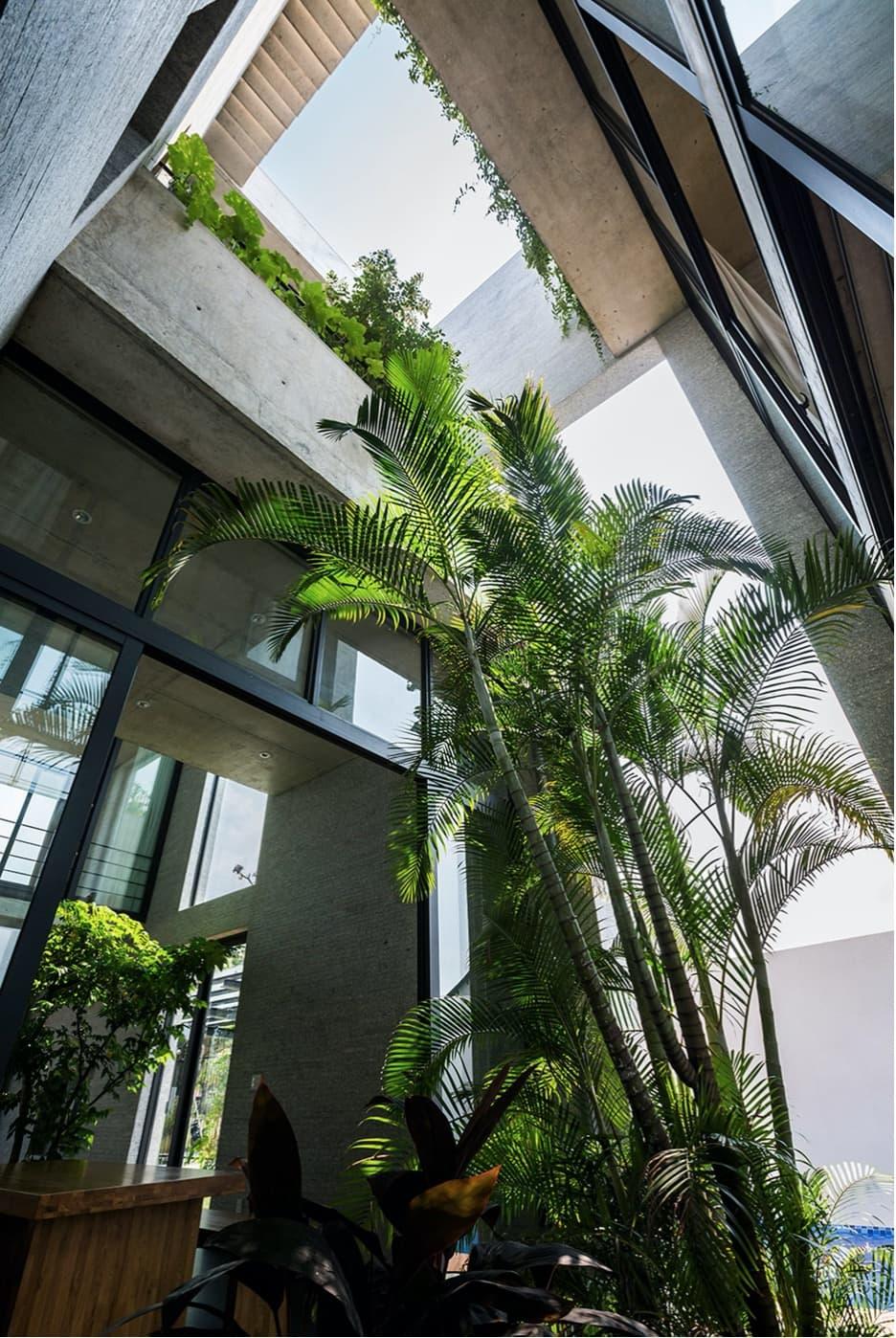 Das Binh House von VTN Architects