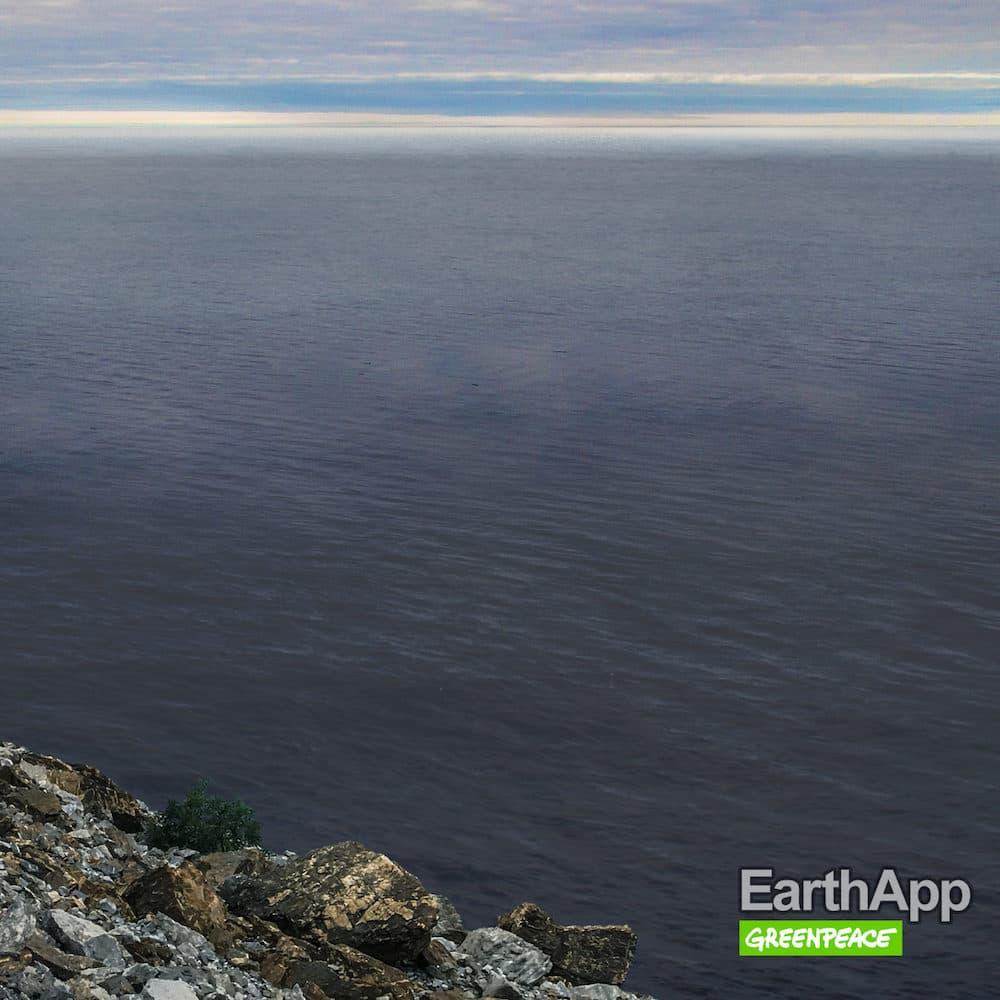 Greenpeace Russia EarthApp