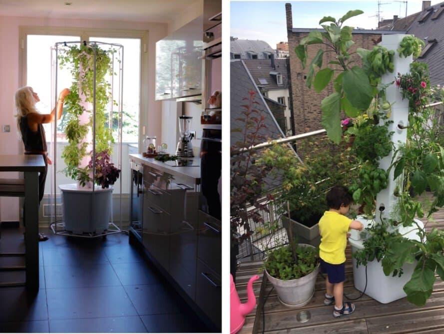 myfood Smart Greenhouse - Das intelligente Gewächshaus