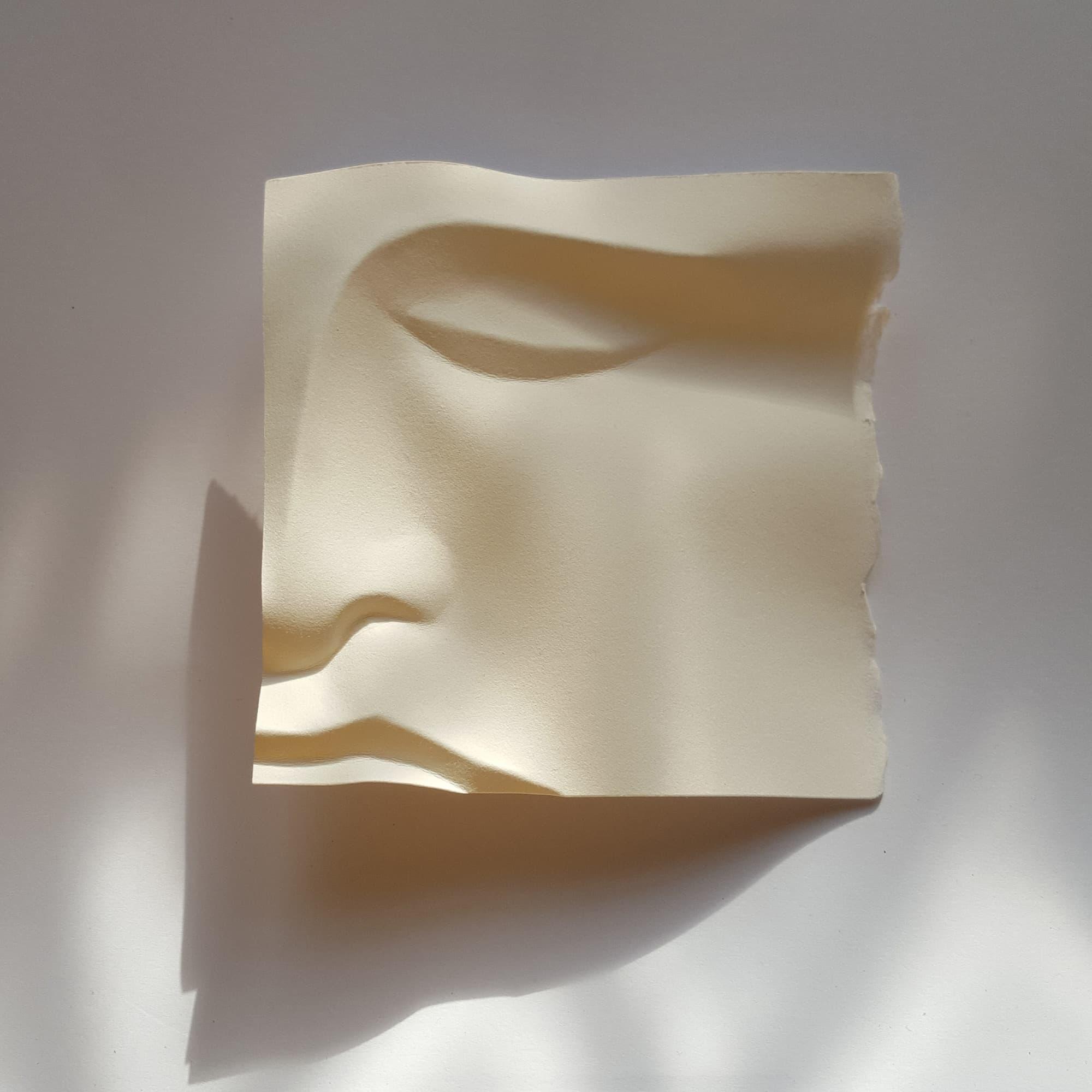 Polly Verity Papierskulpturen Design